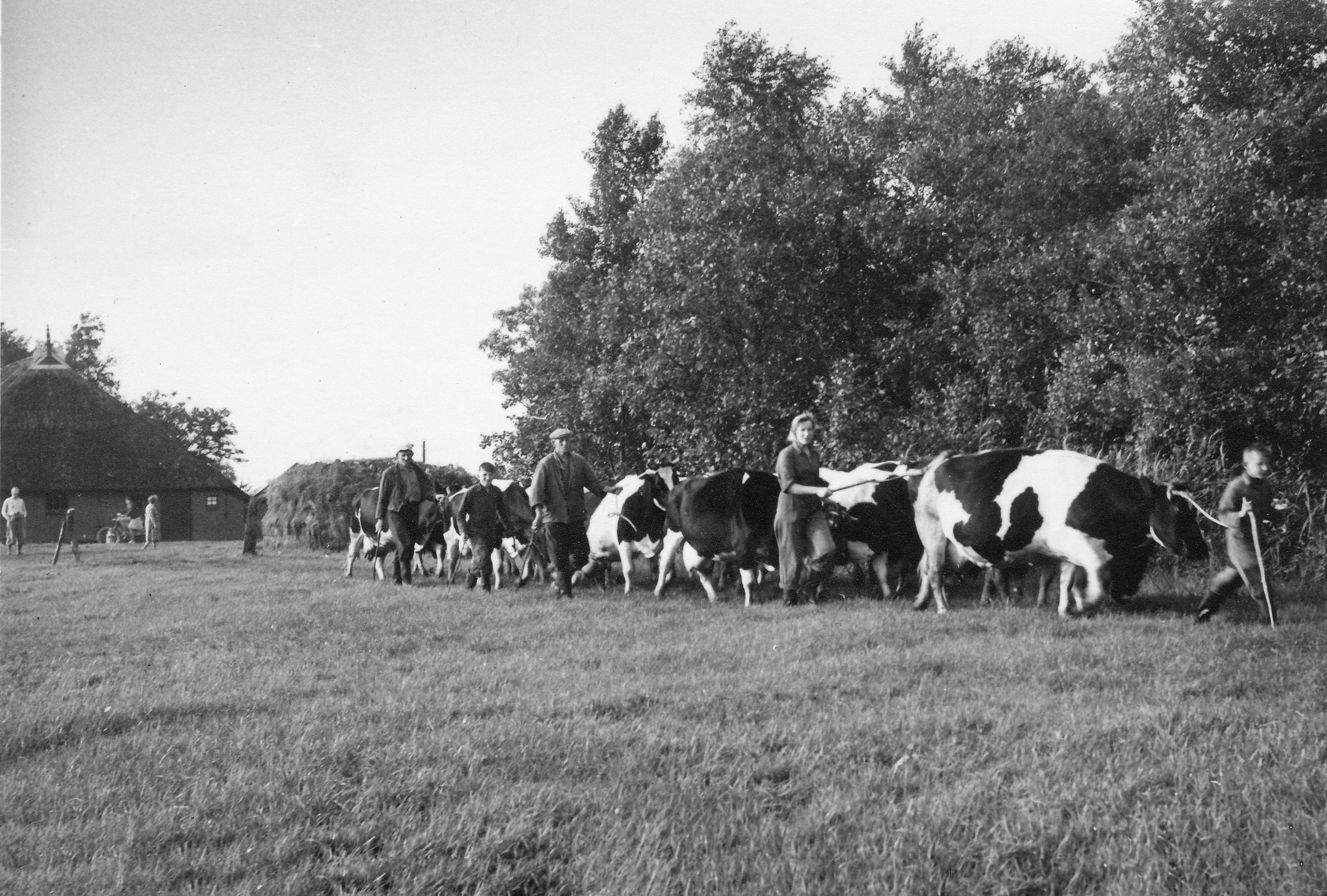 Evacuatie Mei 1940